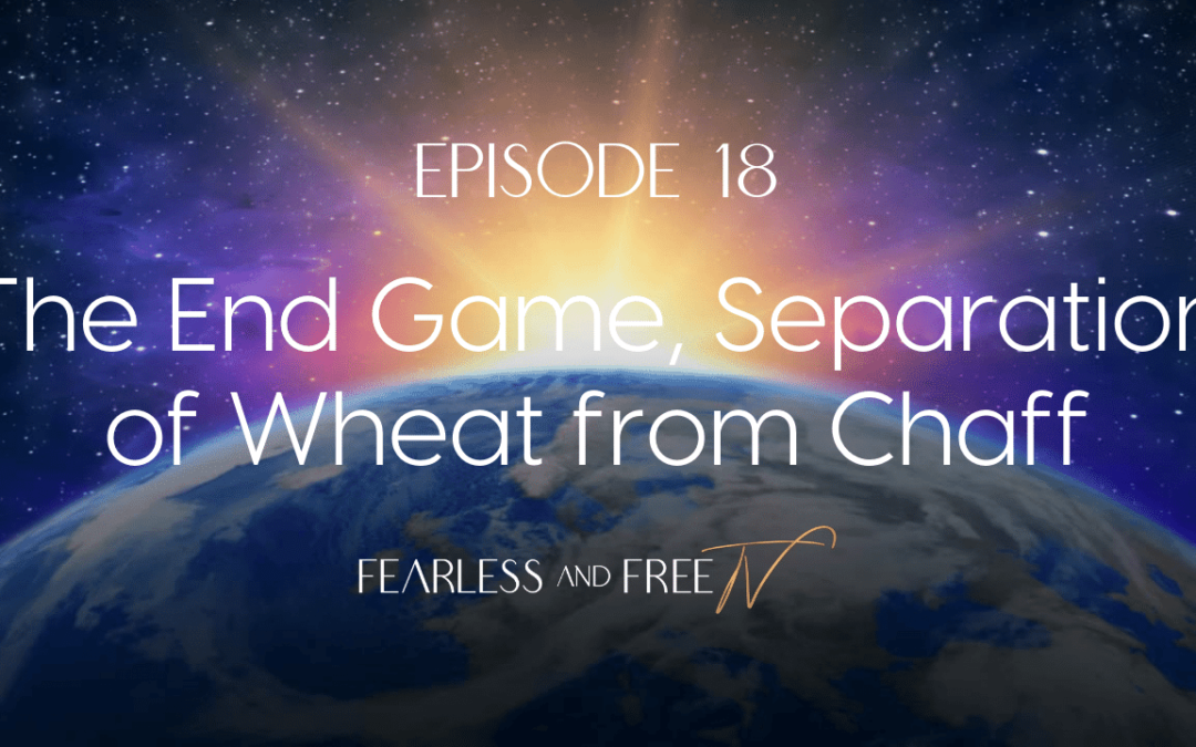 The End Game, Separation of Wheat from Chaff, Light Workers – St. Germain